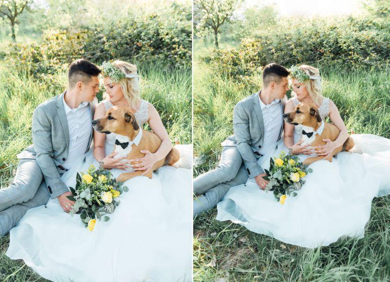 Hochzeitsfotograf Kassel - Hochzeitsfotos mit Hund